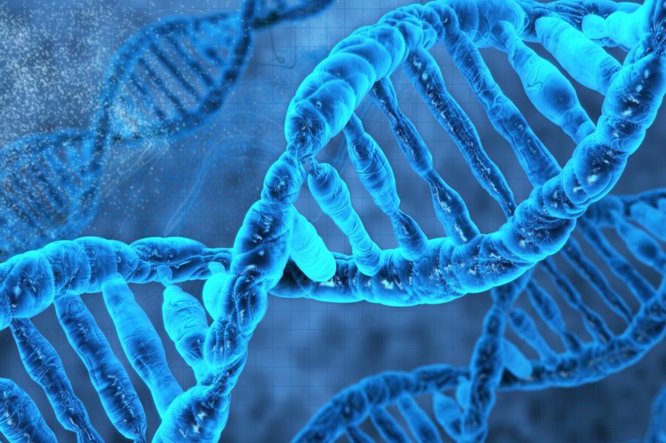 kit-de-estudos-genetica