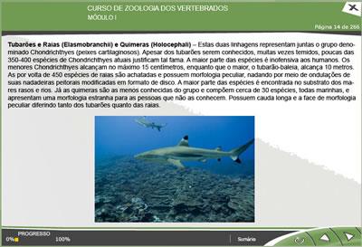 CURSO ONLINE DE ZOOLOGIA DOS VERTEBRADOS1